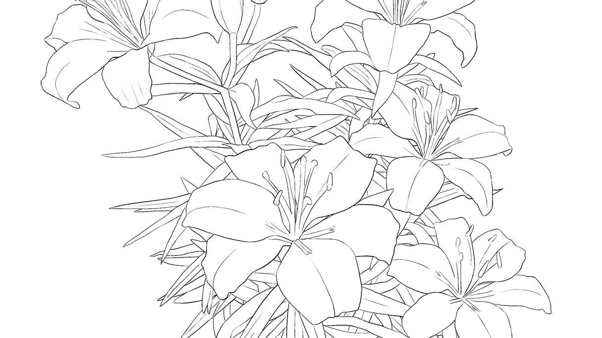 flower02b-1216x684